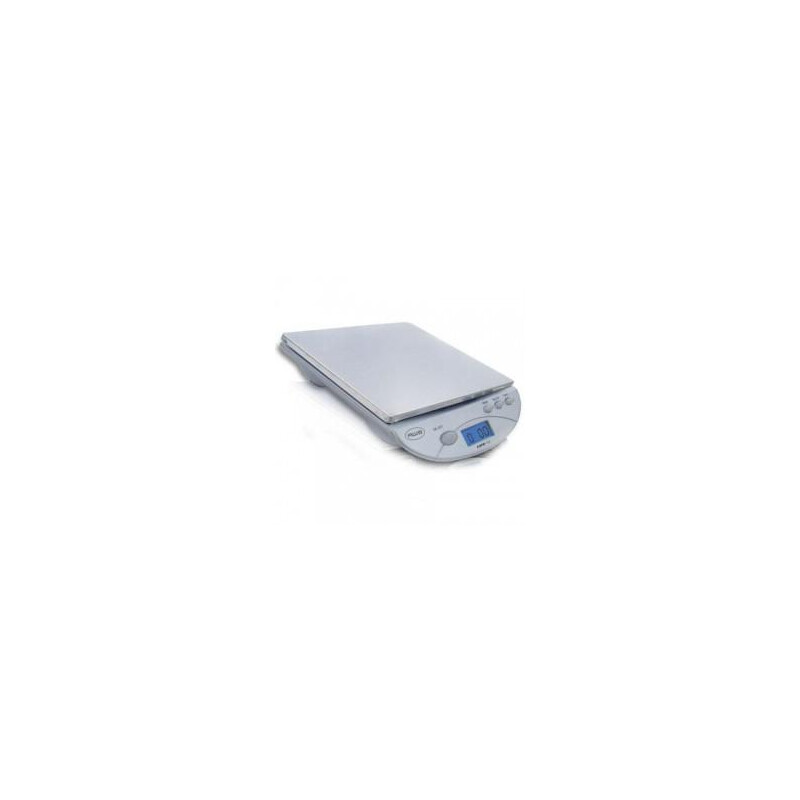 American Weigh Scales AMW13 #1